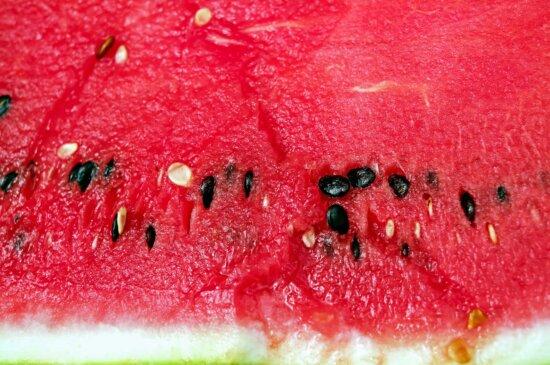 fruits, humides, doux, nourriture, été, melon d'eau