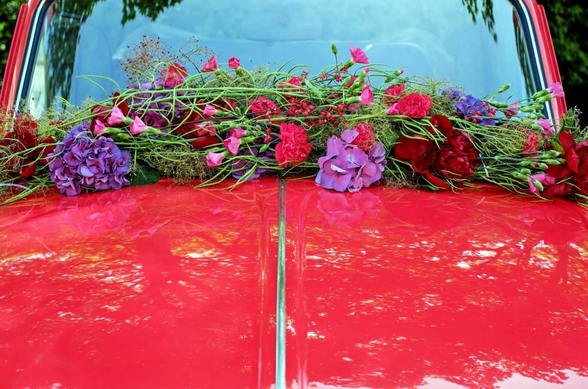 flower, metal, car, decoration, windshield