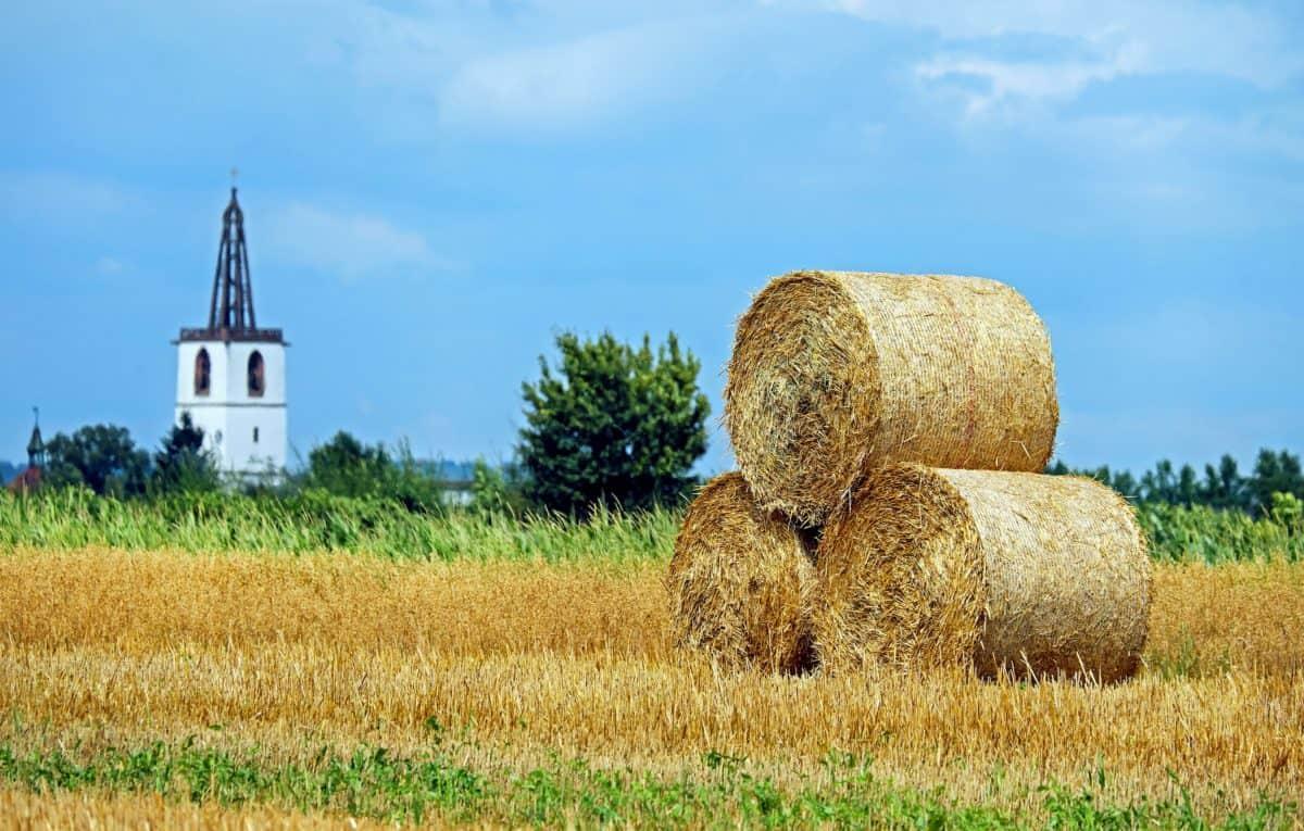domaine, nature, ciel, paille, agriculture, campagne, paille, été