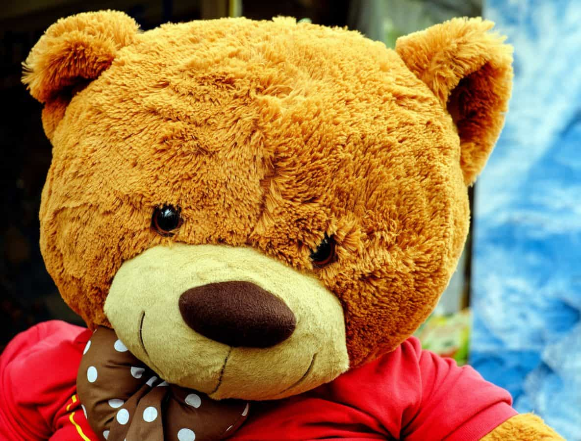 teddy bear, toy, cute, object
