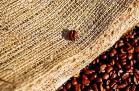 seed, food, texture, bag, coffee, drink