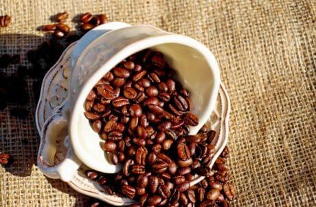 espresso, jídlo, pohár, kofein, fazole, pití, káva