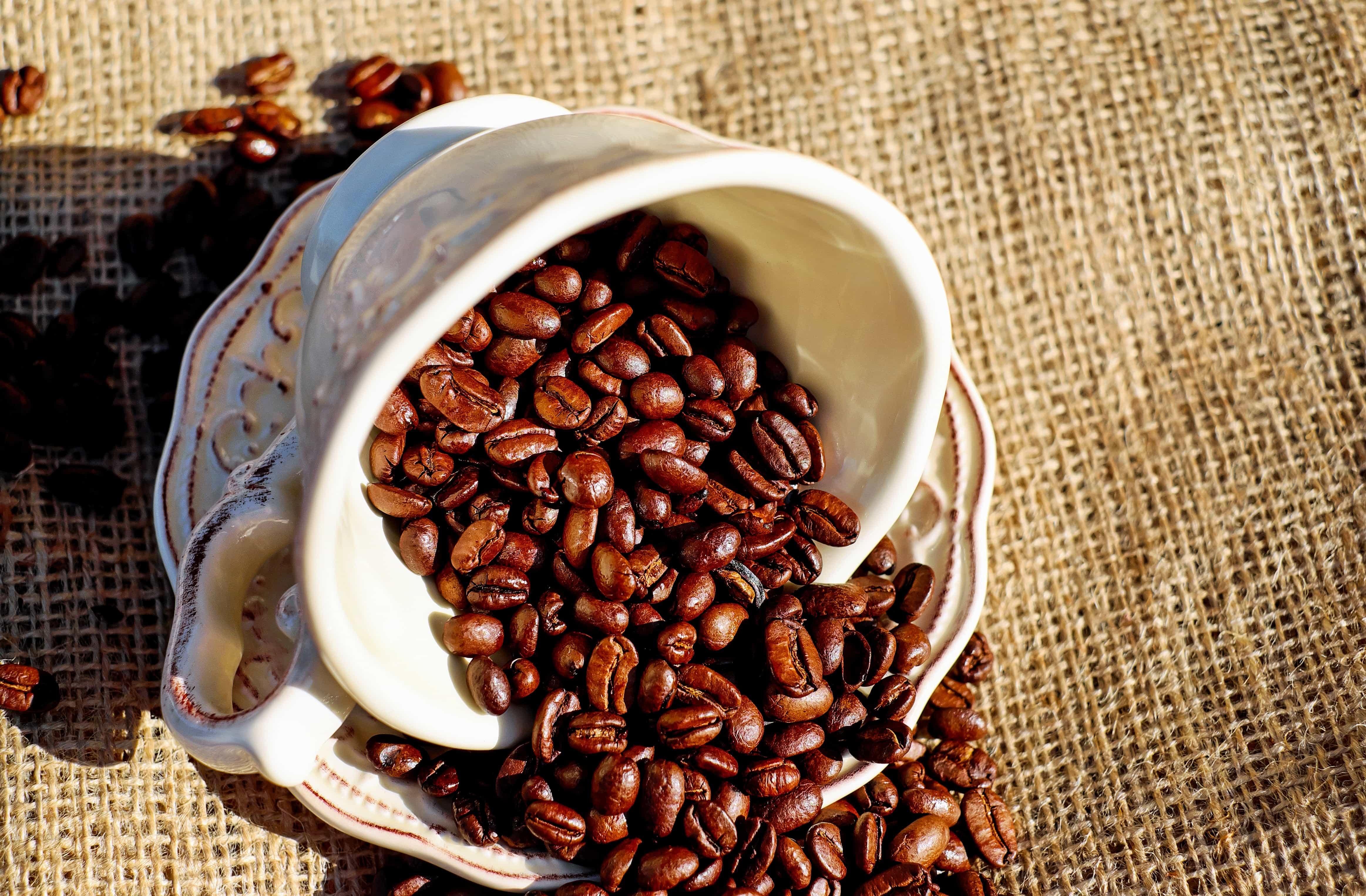 Kostenlose bild espresso essen tasse koffein bohne - Bilder cappuccino ...