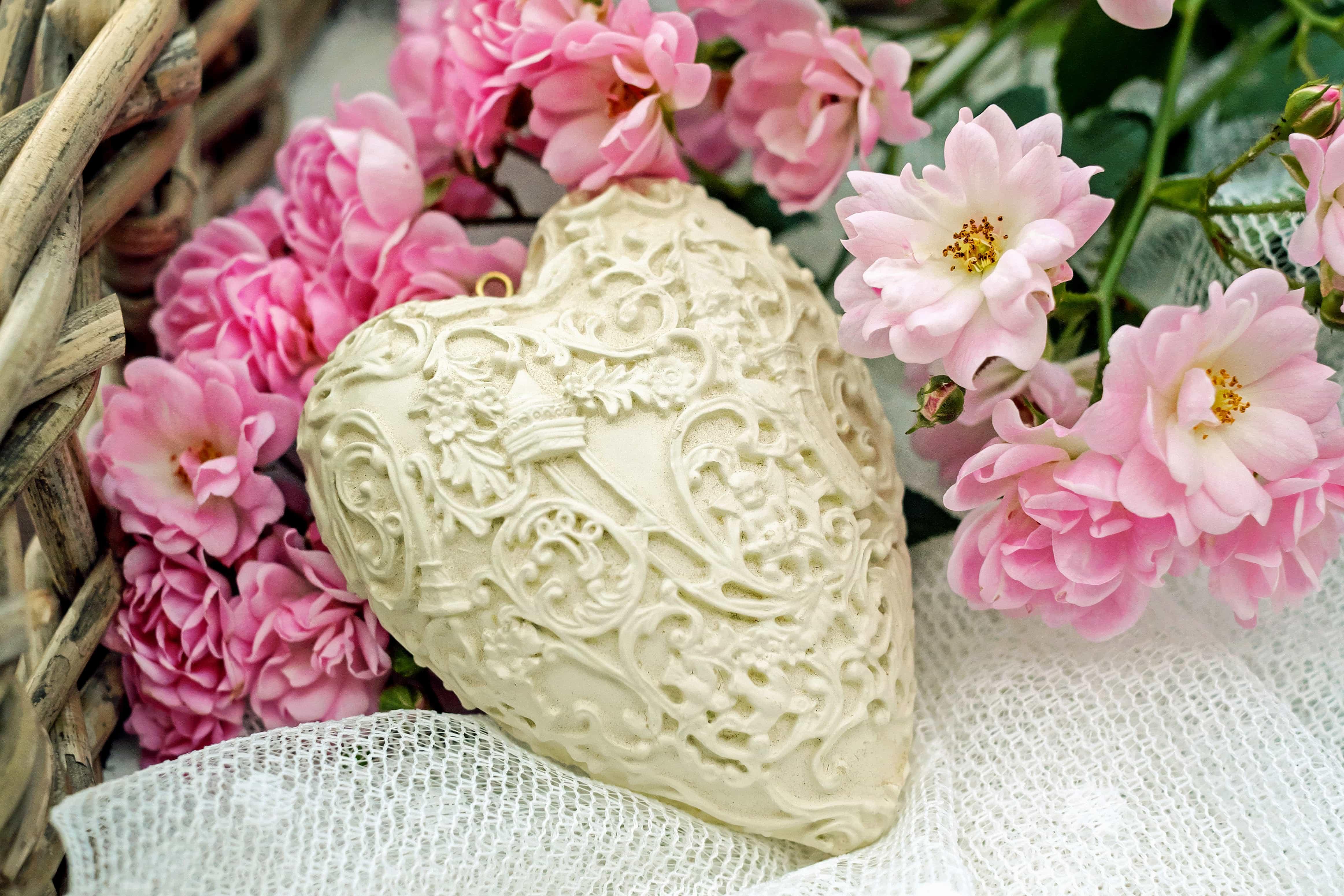 Image Libre Rose Amour Romance Flore Fleur Rose Arrangement