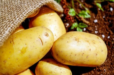 väska, vegetabiliska, mat, ekologisk, potatis, näring
