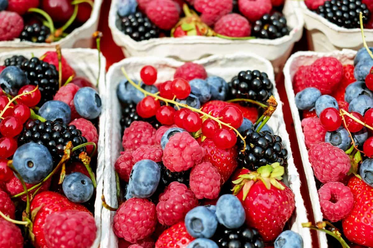 Free picture: market, fruit, food, berry, blueberry ...