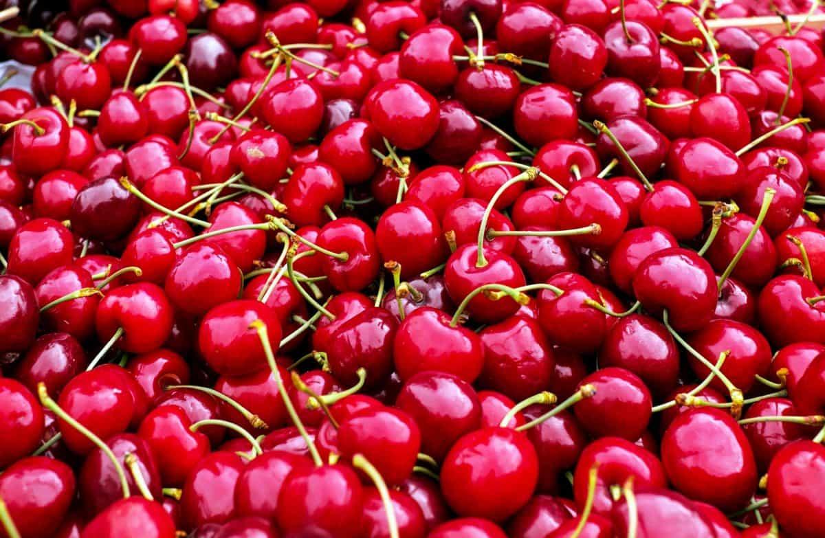 delizioso, mercato, ciliegia, cibo, frutta, nutrizione, rosso, vitamina