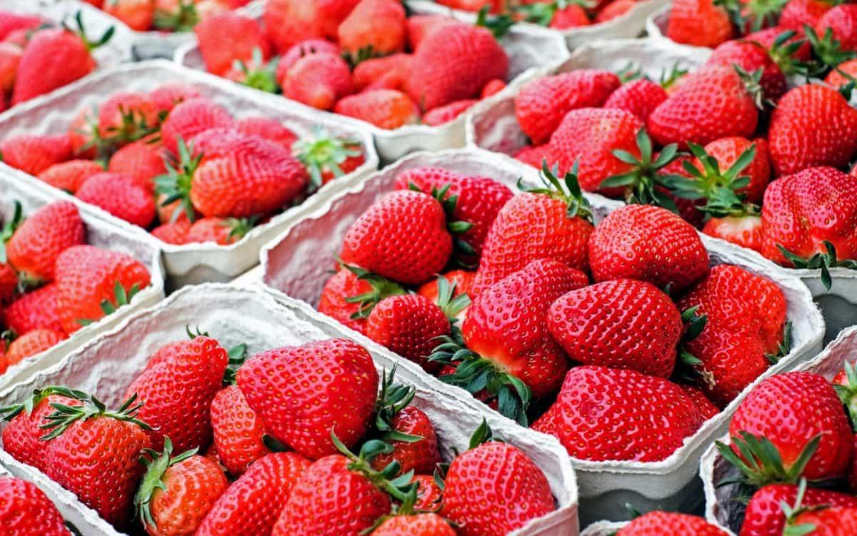 ovocie, potraviny, jahody, sladký, trhu, detail, makro