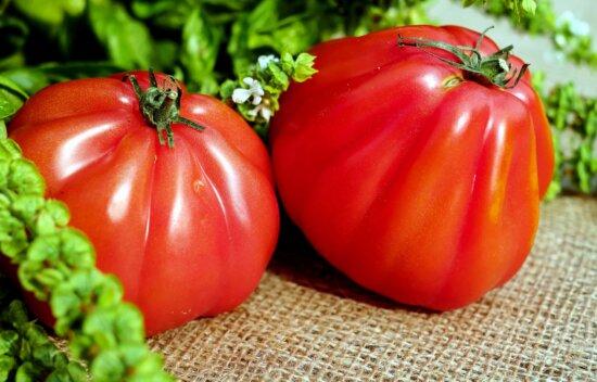 food, vegetable, nutrition, tomato, vegetarian