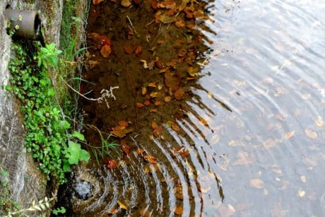 water, reflection, leaf, nature, concrete, pipe