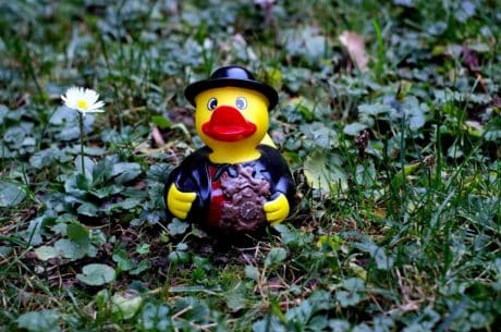 flower, grass, duck, figure, plant, toy, decoration
