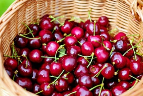 cherry, nutrition, wicker basket, delicious, food, fruit, sweet, sweet, vitamin