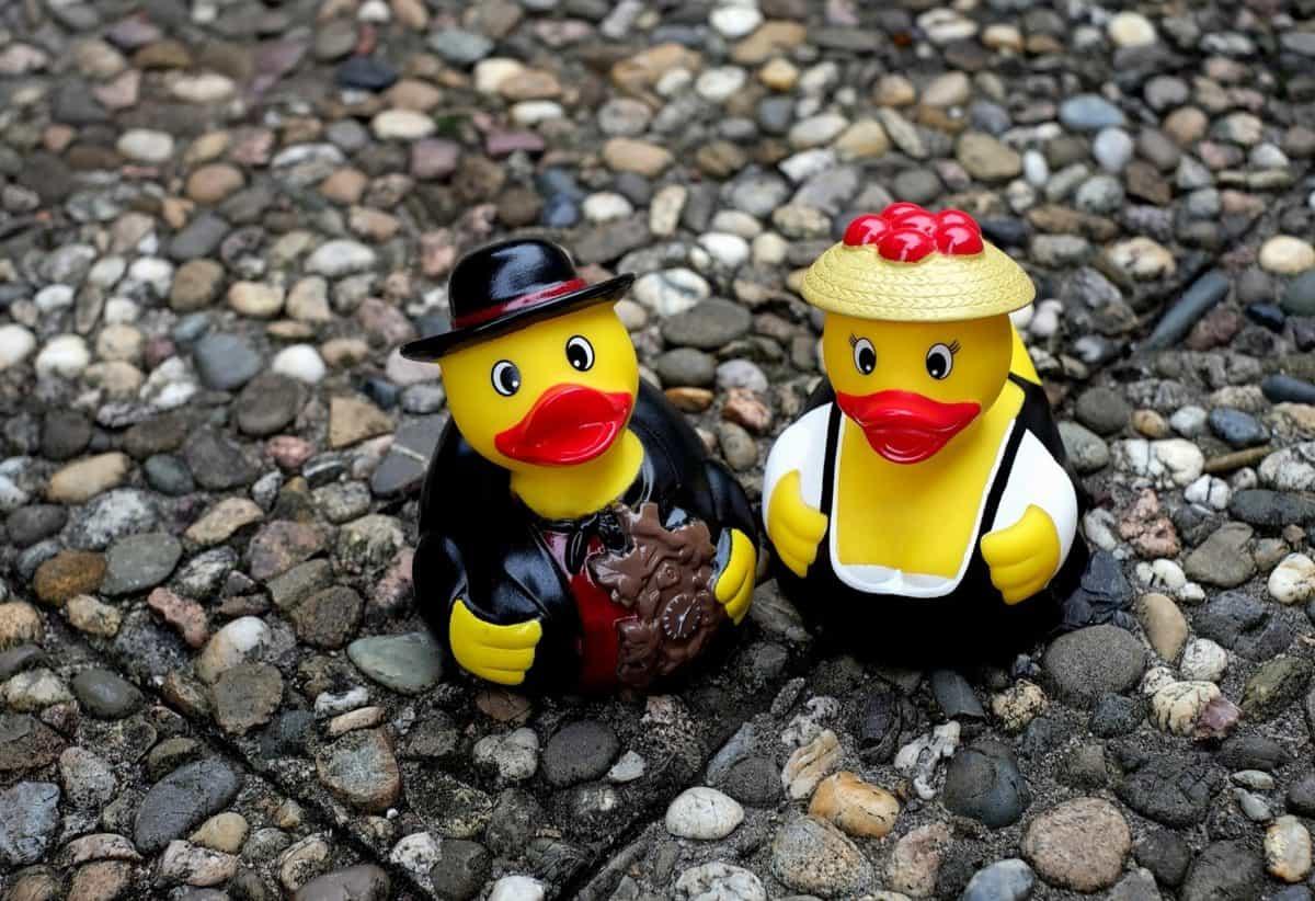 ground, toy, toy, figure, duck, stone