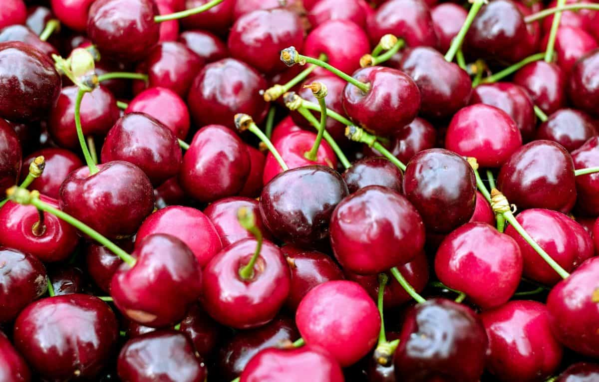 nutrition, delicious, red, cherry, food, fruit, sweet