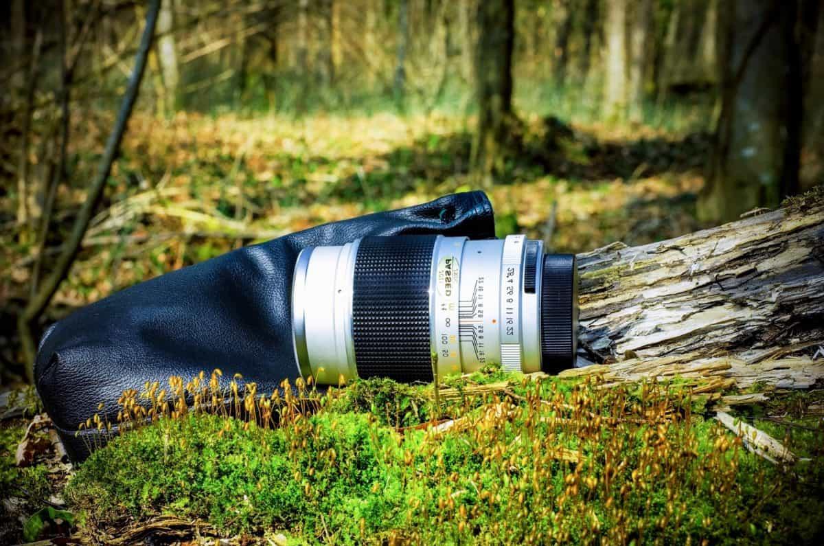 nature, wood, grass, outdoor, tree, lens, photo camera