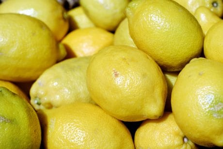 lemon, fruit, food, citrus, diet, macro