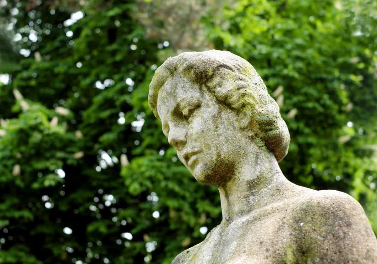 statue, sculpture, art, arbre, extérieur