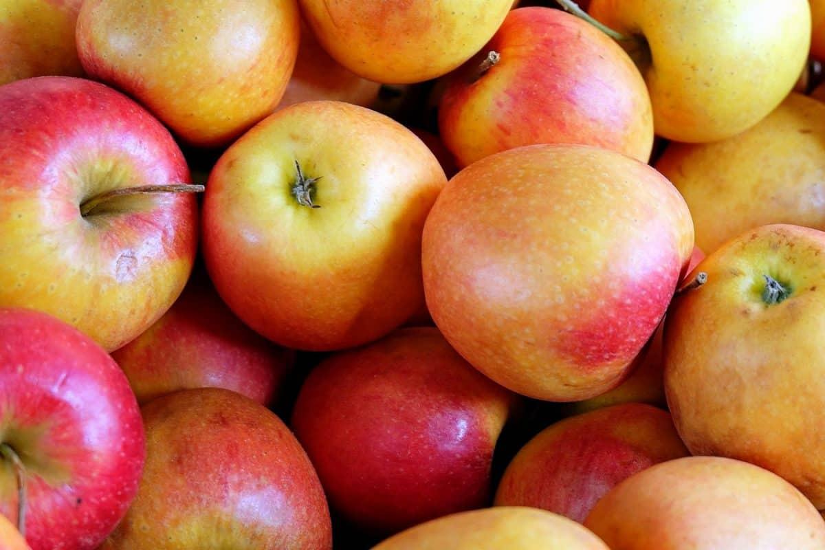 アップル、市場、栄養、食品、おいしい、フルーツ、色鮮やかな、マクロ
