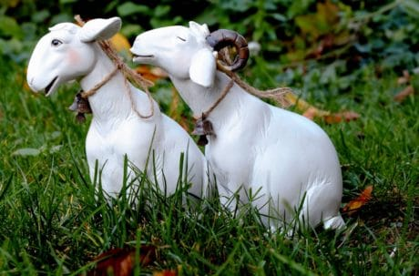 nature, animal, toy, object, goat, figure, grass, decoration