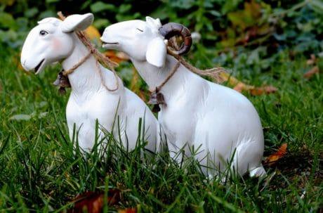natura, animale, giocattolo, oggetto, capra, figura, erba, decorazione