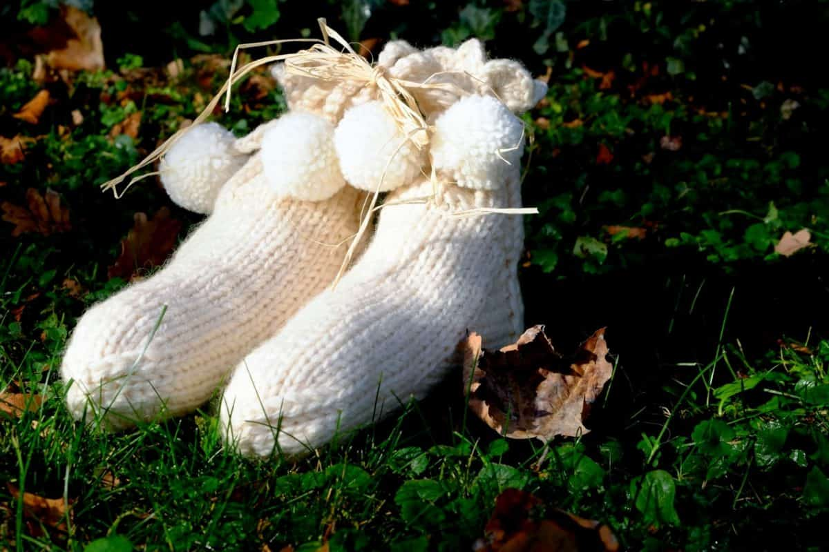 calcetines, lana, tela, hierba, hoja, naturaleza