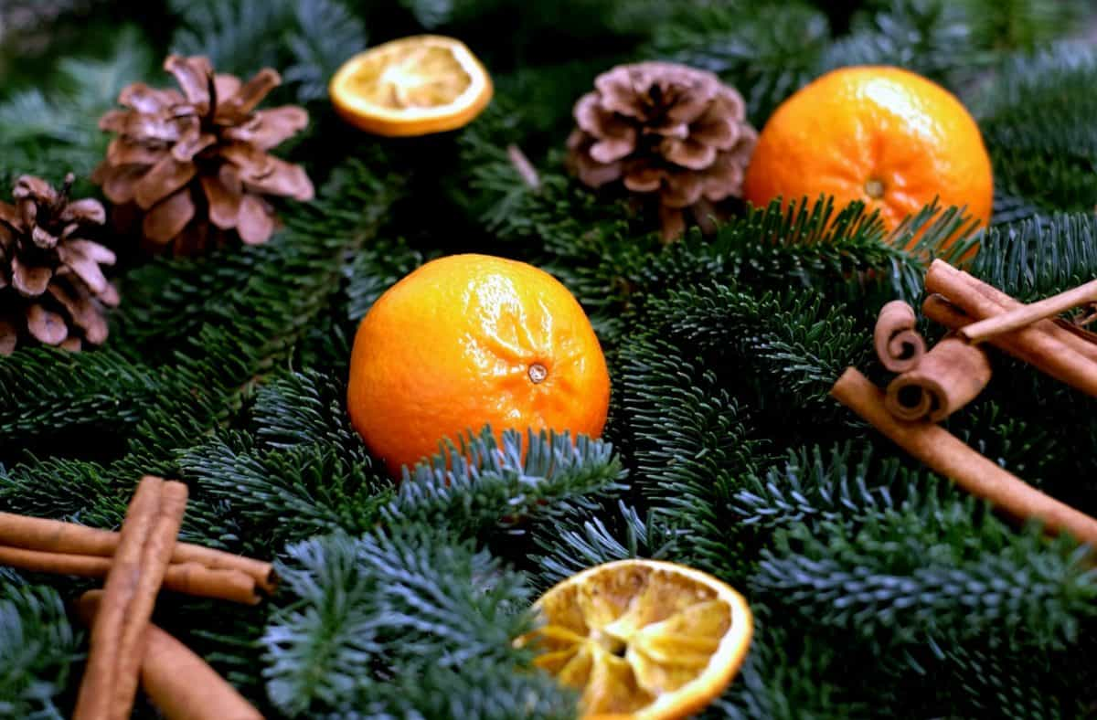 winter, fruit, mandarin, vitamin, decoration, fir