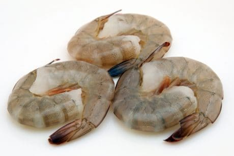 crustacean, food, fish, shell, seafood, sea, gastropod