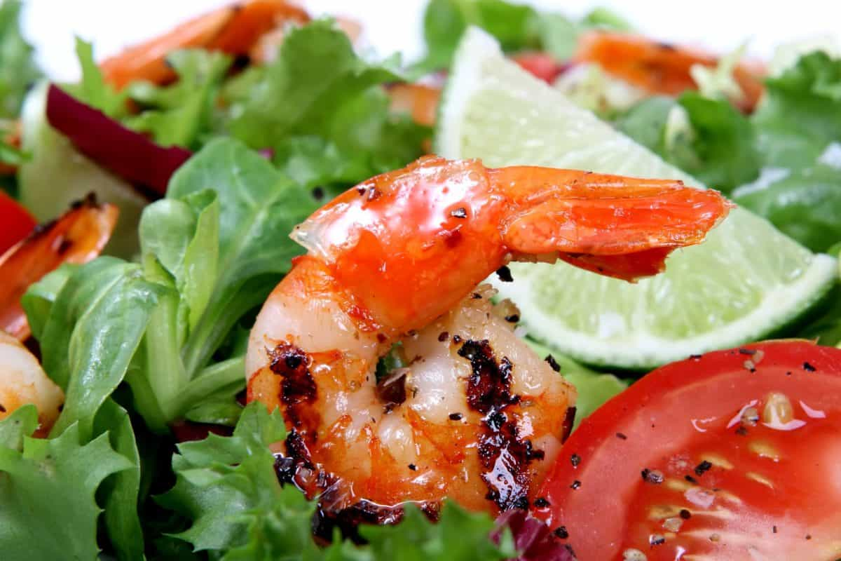 delicious, dinner, seafood, lunch, salad, food, lettuce, meal