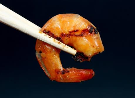 gastéropode, macro, nourriture, alimentation, fruits de mer