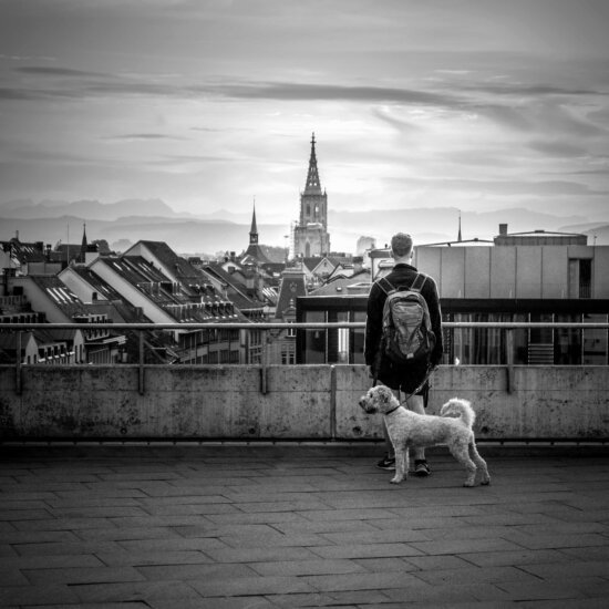 street, people, monochrome, sky, outdoor, church, dog, building, architecture