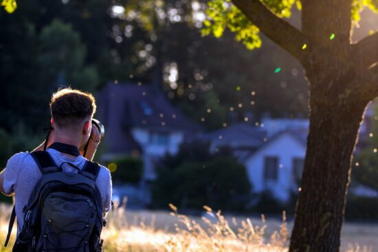 nature, people, tree, outdoor, person, wood, backpack, man, photo camera