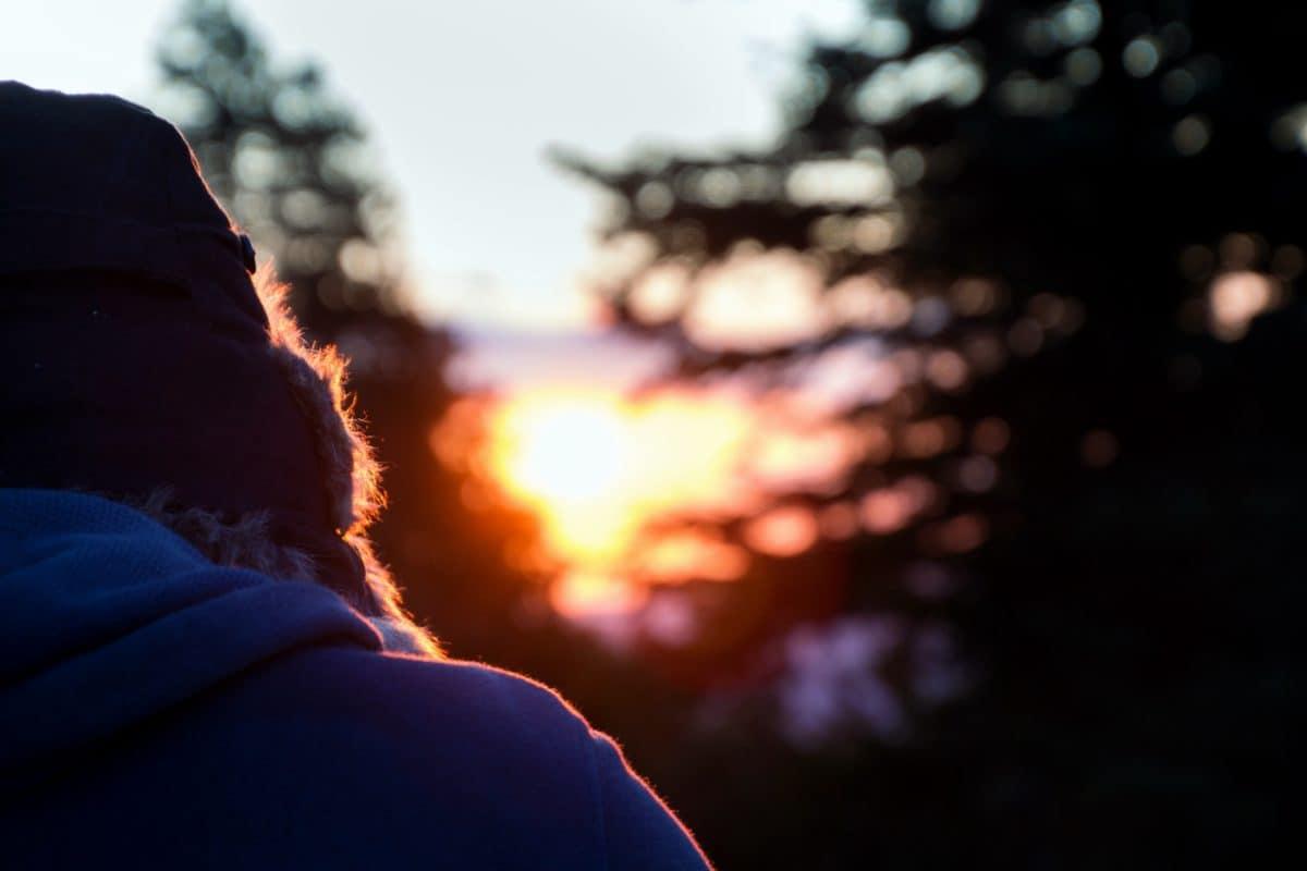 person, sunshine, tree, outdoor, dusk, sunset, nature
