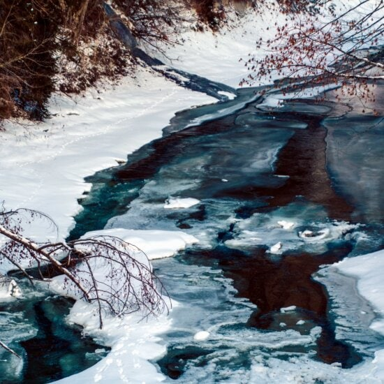water, cold, snow, frost, ice, winter, forest, landscape