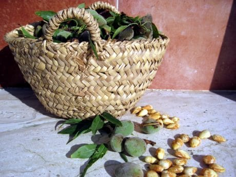 wicker basket, wooden, food, corn, still life, outdoor, seed
