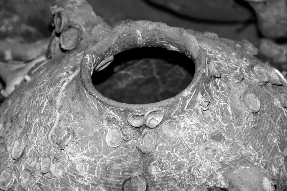 pottery, ceramics, monochrome, object, detail, art, old