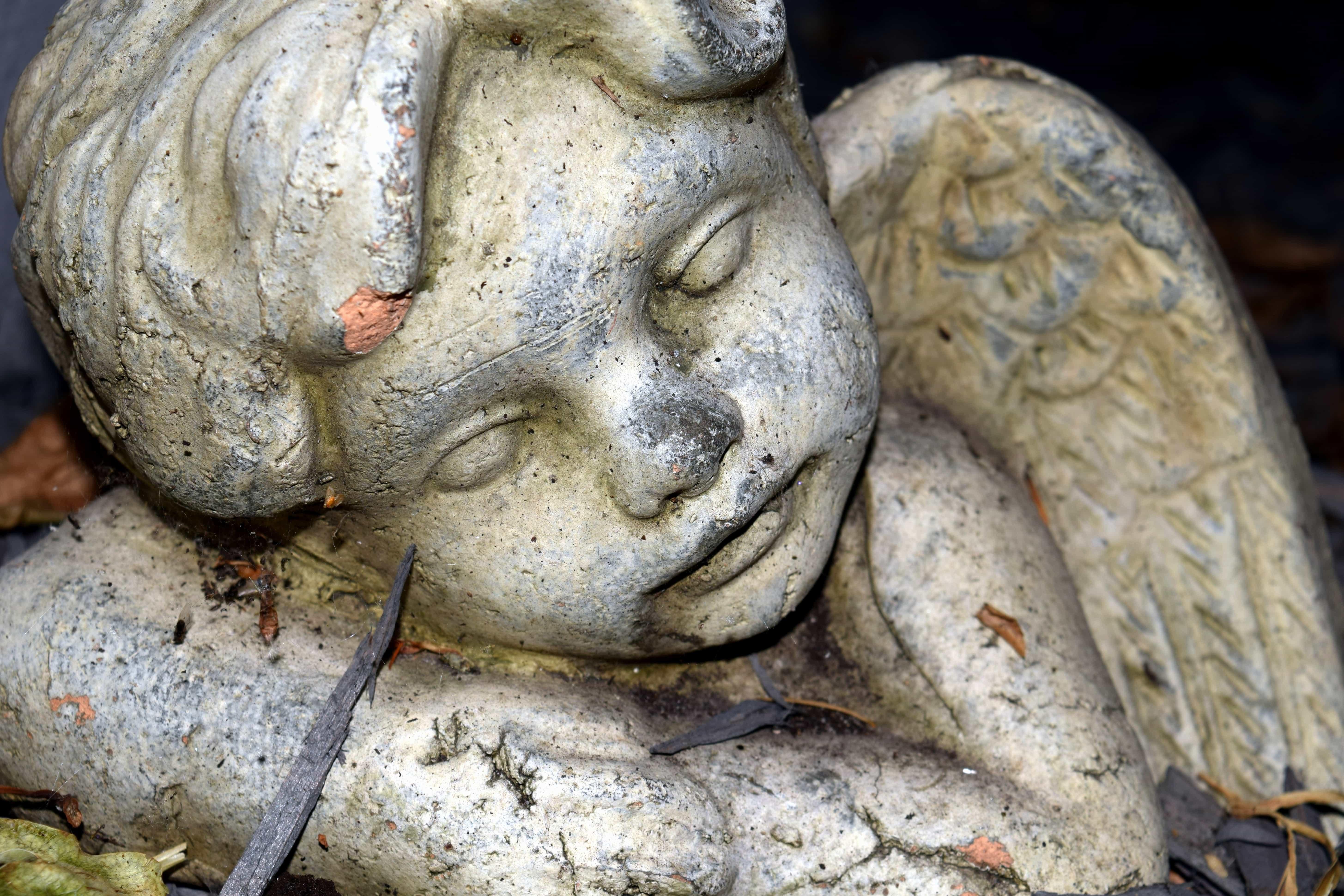 картинка ангел в грязи ладонь