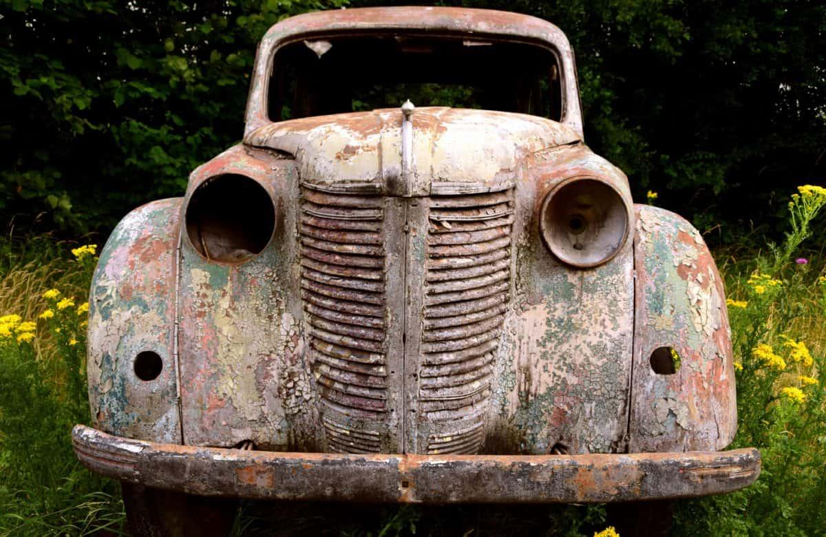 old, retro, rust, car, tree, outdoor