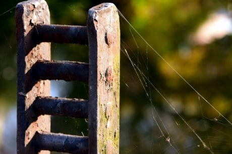 rust, object, cobweb, daylight, shadow, nature, metal