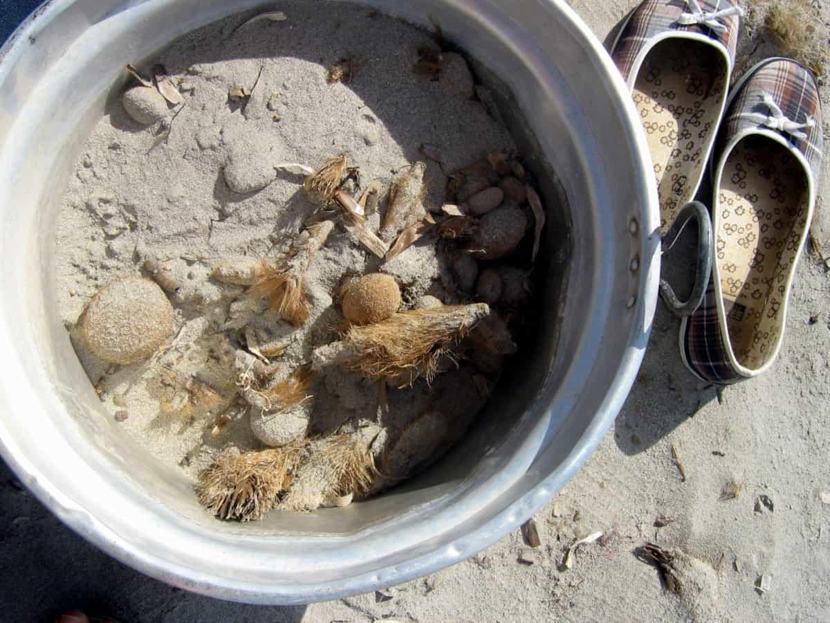 arena, calzado, metal, cubo, piedra, planta, madera, playa