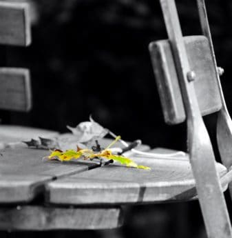 chaise, table, feuille, monochrome, nature morte, bois