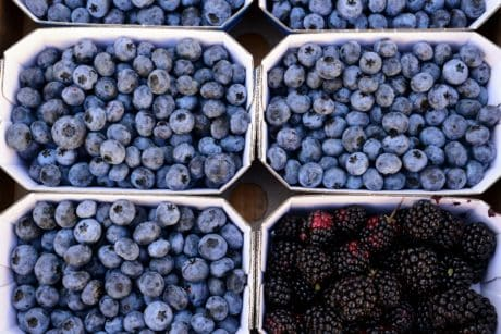 berry, blueberry, blackberry, food, fruit, diet, bilberry