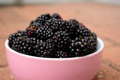 fruit, food, berry, blackberry, diet, bowl, sweet