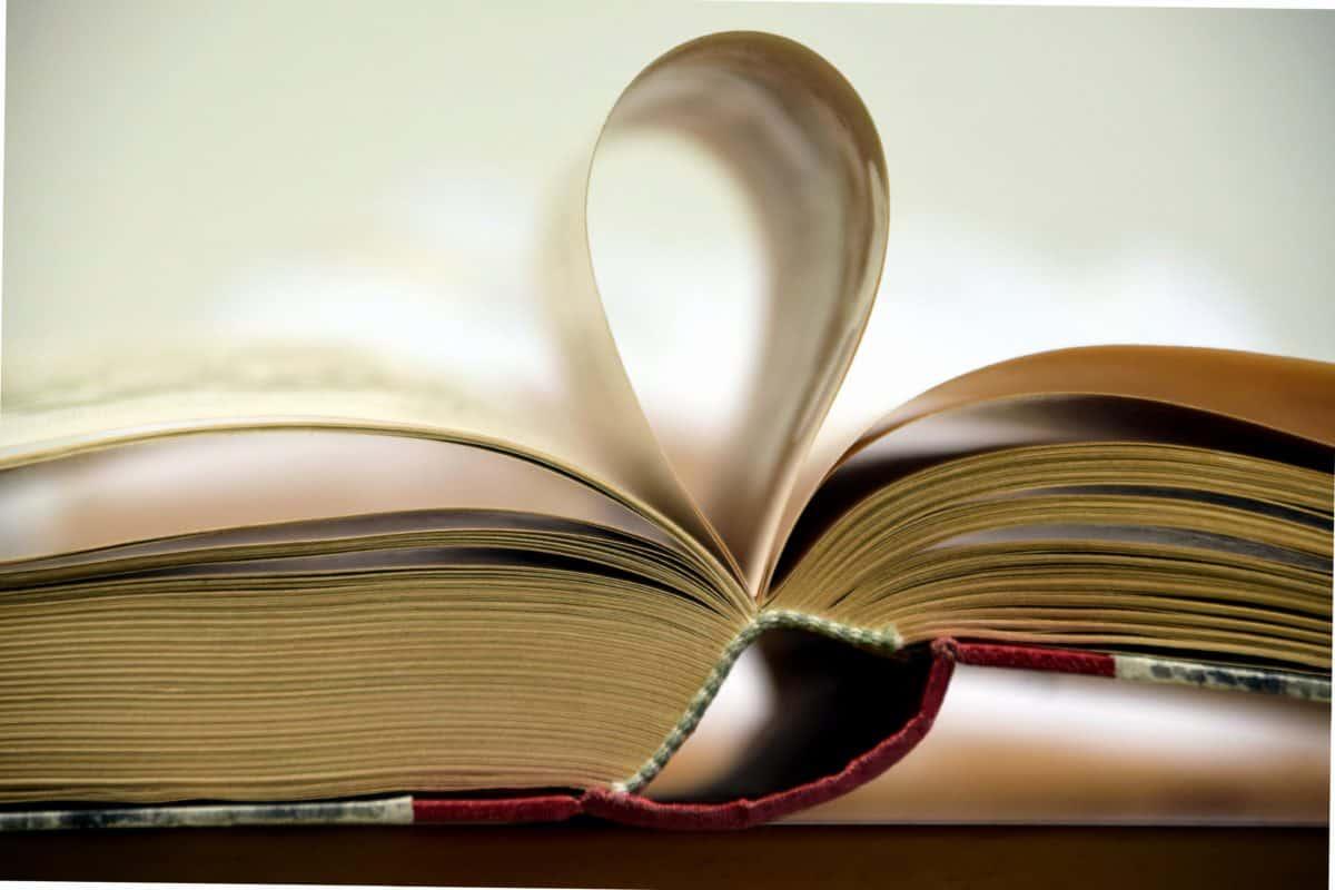bibliothèque, éducation, connaissances, littérature, livre, étude, sagesse