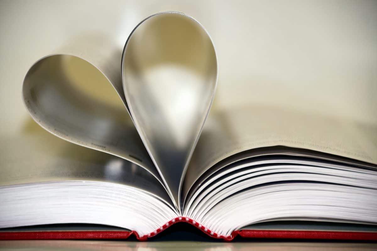 library, knowledge, literature, education, study, book, wisdom