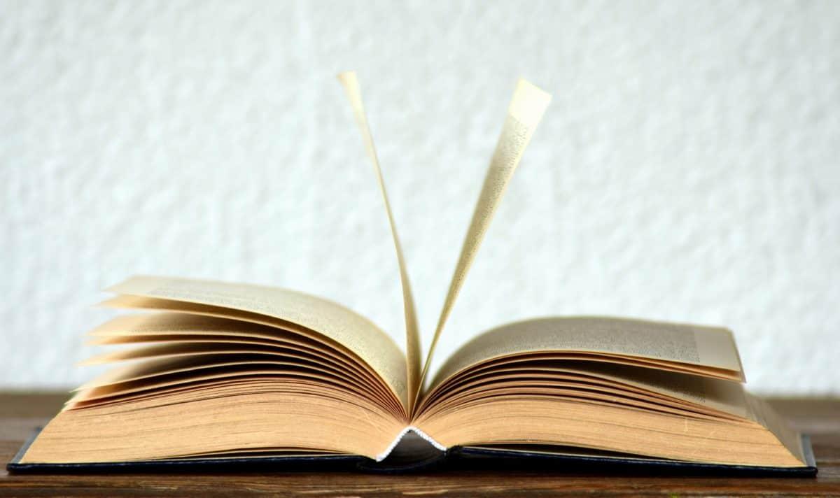 library, education, literature, book, wisdom, knowledge, study