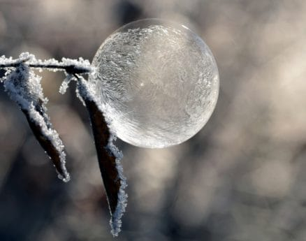 nature, winter, ice, ball, reflection, leaf, snowflake, sphere