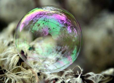 sfera, macro, natura, riflessione