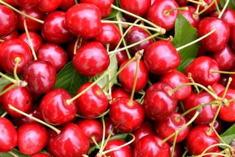 leaf, delicious, cherry, food, fruit, organic, diet, red, organic