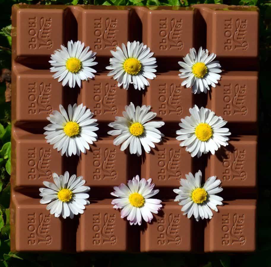 chocolat, bonbons, fleur sombre, douce,