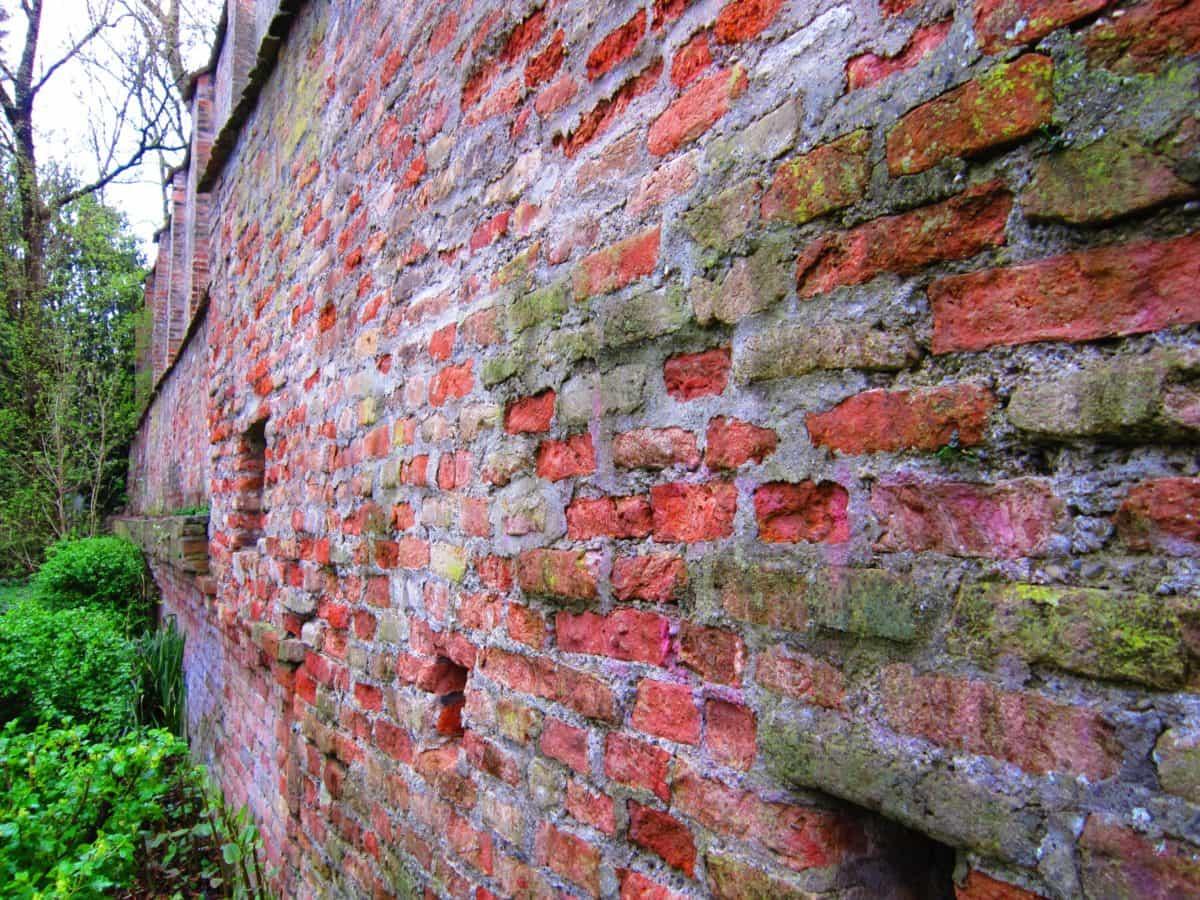 muro, pietra, mattone, vecchio, architettura di esterni, albero,